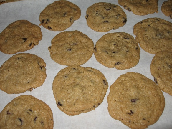 Oatmeal Raisin Cookies 006